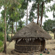 Hut in Ethiopia — Stock Photo #10752190