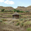 Hut in Ethiopia — Stock Photo #10838791