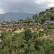 Village in Ethiopia — Stock Photo #10993614