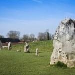 Avebury stone circle standing stones — Stock Photo #11836203