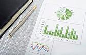 Consultor financeiro empresária negócios finanças uma pessoa gerente arquivo pessoas segurando re marketing — Foto Stock
