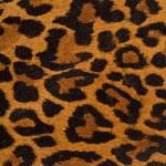 Постер, плакат: Leopard print pattern