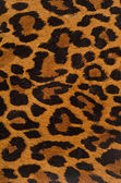 Leopard print pattern — Stock Photo