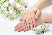 Hands and flowers — Stock Photo