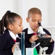 Stock Photo: Elementary school kids in science class