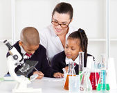 Primary science class — Stock Photo