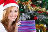圣诞礼物的年轻女人 — 图库照片