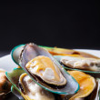 Mussel on black background — Stock Photo