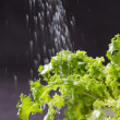 Water pouring to the fresh lettuce leaves — Stockfoto