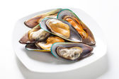 Raw mussel on plate — Stock Photo