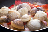 Clams cooking in pan — Stock Photo