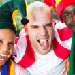 Group of super fans of sports — Stock Photo #11364406