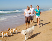 Family and family dogs running on beach — Stock Photo