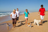 Active family with dogs running on beach — Stock Photo