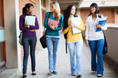 College students walking to lecture hall — Stock Photo