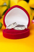 Wedding rings made of white gold — Stock Photo