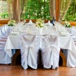 Beautifully served table — Stock Photo #11654466