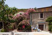 Edificios antiguos y las flores en la isla de capraia — Foto de Stock