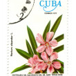 Old postage stamp from Cuba with flower — Stock Photo