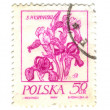 POLAND - CIRCA 1968: A stamp is printed in Poland, flower, let o — Stock Photo