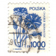 POLAND - CIRCA 1989: A 1000 zloty stamp printed in Poland shows — Stock Photo