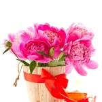 Pink peony — Stock Photo #10745972