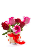 Bright beautiful pink roses — Stock Photo
