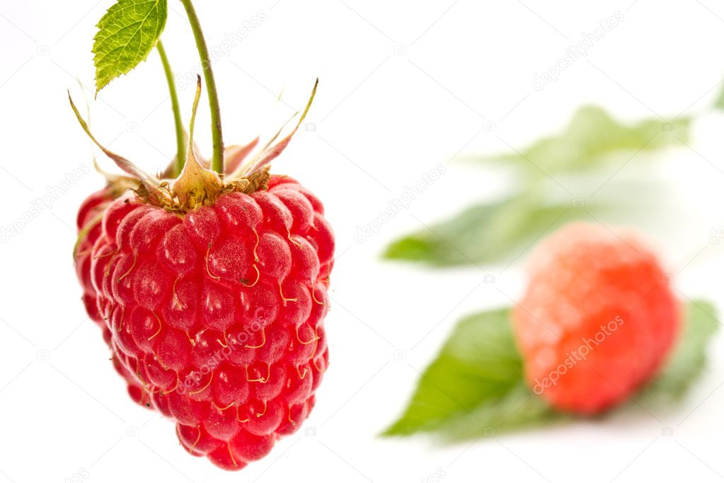 Fresh red ripe raspberries on white background — Foto de Stock   #11379005