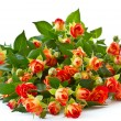 Bouquet of red roses — Stock Photo #11895748