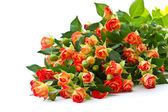 Bouquet of red roses — Stock Photo