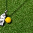 Golf club and ball top view — Stock Photo #11790679