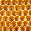 Bee honey in honeycomb macro — Stock Photo