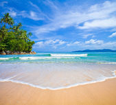 Ocean beach with island and palm trees — Stock Photo