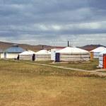 White Mongolian yurts in the Gobi Desert — Stock Photo #11519820