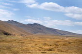 Blue sky over the vast Mongolian steppes — Стоковое фото