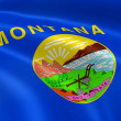 Montanan flag in the wind - Stock Photo
