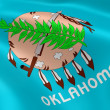 Oklahoman flag in the wind — Stok fotoğraf
