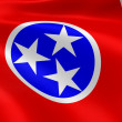 Tennessean flag in the wind — Stock Photo
