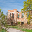 Noble house ruin — Stock Photo #11332236