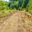Eroded road — Stock Photo