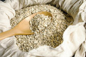 Rolled oats seed in spoon — Stock Photo