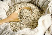 Válcované oves osivo v lžíce — Stock fotografie
