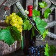 A bottle of wine on the background of the vine - Stock Photo