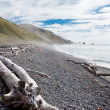 Gravel beach and driftwood in Gore Bay, NZ — Stock Photo #10767337
