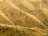 干ばつから山斜面黄色の草地 — ストック写真