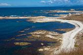Rocky shore near Kaikoura, South Island, NZ — Stock Photo