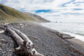 Gravel beach and driftwood in Gore Bay, NZ — Stock Photo