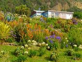 Rural dream house in lush flowering natural garden — Stock Photo