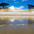 Coastal sand dune reflections on beach at low tide - Stock Photo