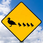 Roadsign warning, ducks with ducklings crossing — 图库照片